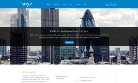 Netgun Solutions